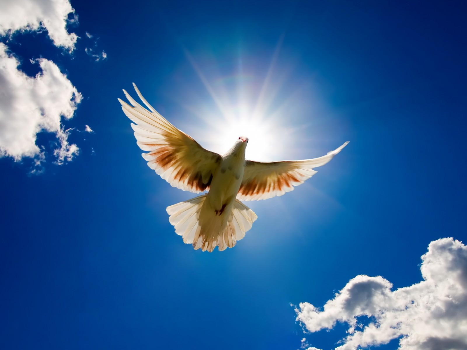 Recebei o Espírito Santo