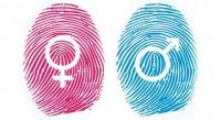 A Ideologia de Gênero sob a ótica judaico-cristã