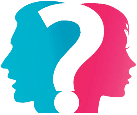 Evangélicas e Feministas: o que elas realmente pensam sobre a Bíblia